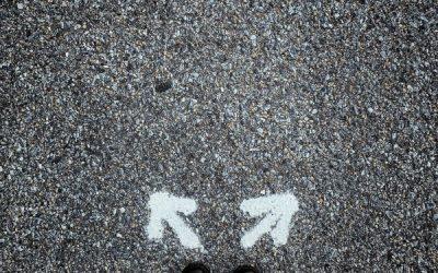 Transition professionnelle : choisir la voie du milieu